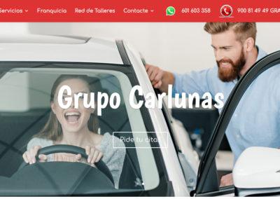 www.grupocarlunas.com